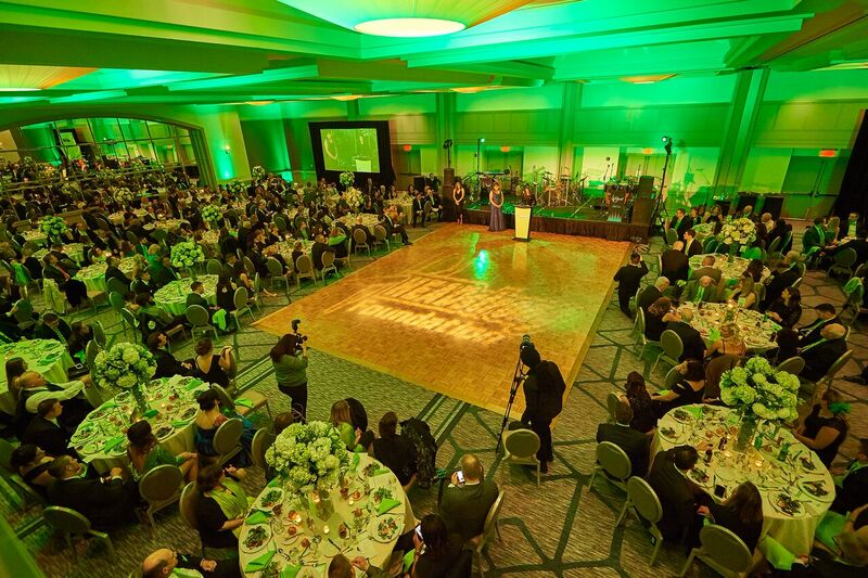7th Annual Gala Puts HEADstrong In The Lime Light, Raises Record $220,000